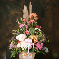 Arrangement w/ Teddy Bear for newborn baby girl (HT) PS65